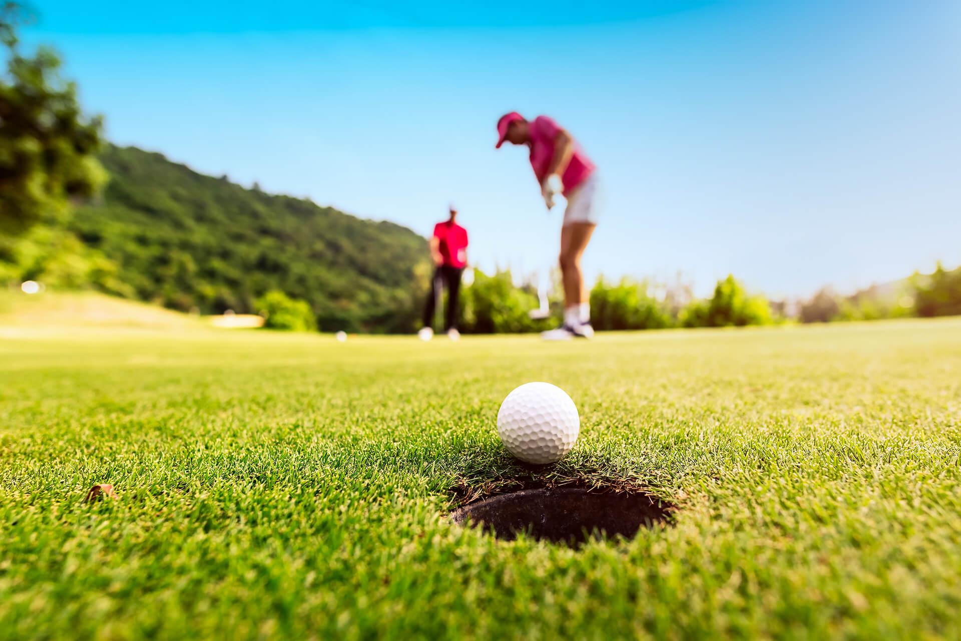 AGI Concepts - Artificial Golf Greens