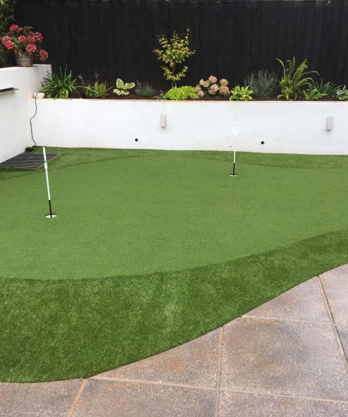 AGI Concepts - Home Artificial Golf Green