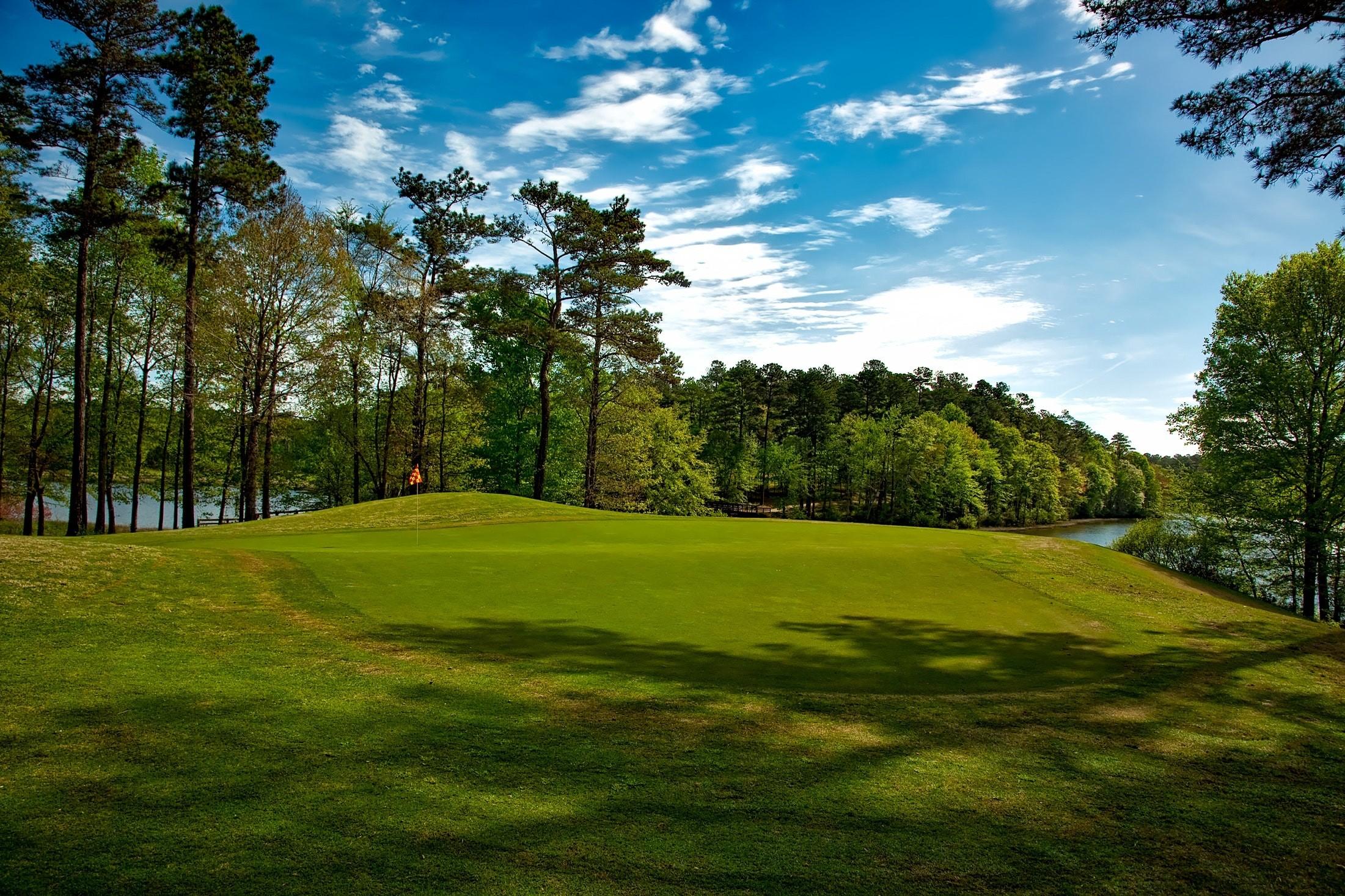 AGI Concepts - Golf Greens