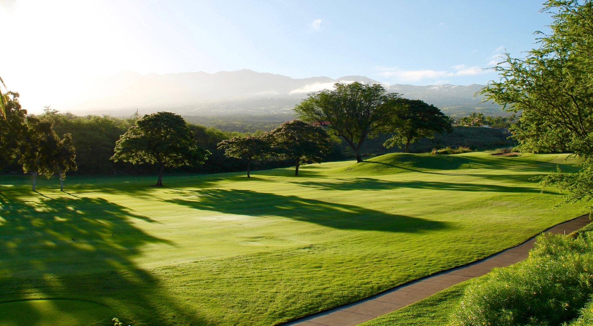 AGI Concepts - Golf Green